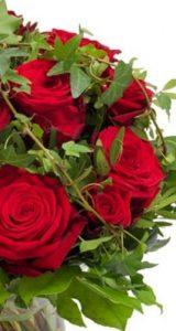 Floristerias Vitoria Gasteiz , regalar flores para San Valentín.