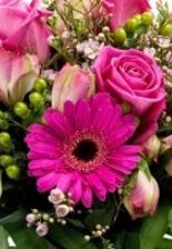 Floristerías Vitoria Gasteiz, enviar ramos de flores silvestres de regalo, Día San Valentín, Día de la madre, cumpleaños, ramos regalo, mandar flores, enviar flores, Flores en Red, Bediflor, Inmemoryd