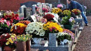 Flores en Red - Cementerios Día de Todos los Santos