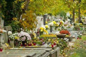 Cementerio Día de Todos los Santos - Flores en Red