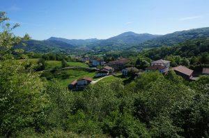 Valle del Baztan - Flores en Red - Floristería Vitoria