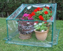 proteger plantas invierno, Flores en Red, Floristería Vitoria, Envio flores y plantas urgente para regalo, cumpleaños