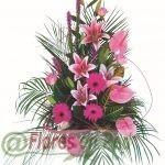 Centro de Flores Nevus