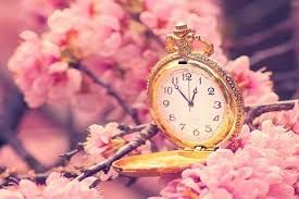 Flores para cumpleaños, Flores nacimiento, Flores, Ramos de Flores para regalar, Envío urgente de Flores en Vitoria