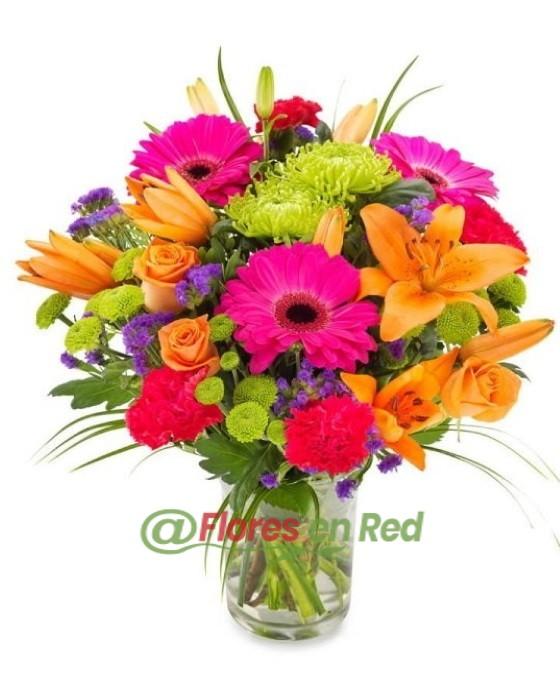 Ramo Flores Colorido Vitoria
