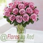 Ramo de 24 Rosas Rosadas Premium