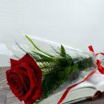 Enviar Rosa Sant Jordi
