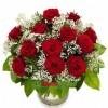 Rosas Elegantes con Paniculata