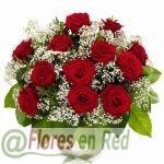 Rosas Elegantes con Paniculata Recomendado