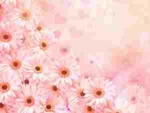 flores para cumpleaños, ramo de rosas de cumpleaños, ramos de flores para felicitar cumpleaños, rosas para cumpleaños, flores cumpleaños