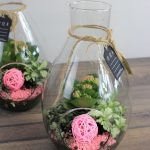 Botella Composición de Plantas