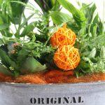 Composición de planta con Detalles naranjas