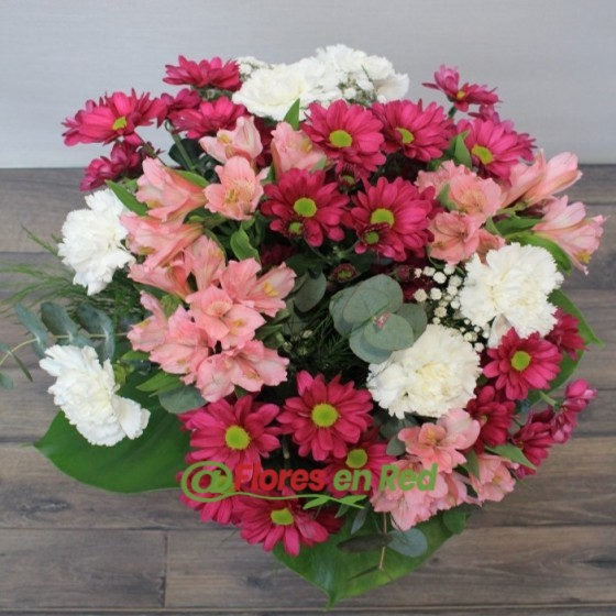 Flores Multicolor del Ramo de Margarita y Alstroemeria