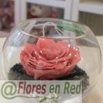 rosa preservada rosa en pecera