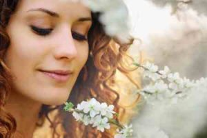 flores, enviar ramo de flore, ramos de flores a domicilio, ramos de flores urgentes, ramos de flores para regalar, mandar flores online, ramosde flores, flores para nacimientos, ramo flores rosas