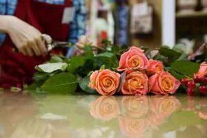 ramo de rosas blancas, enviar ramode rosas, 6 rosas rojas, enviar rosa, Rosas de San Valentín,, regalar rosas a domicilio, floristerías Vitoria, floristería online, floristería Vitoria