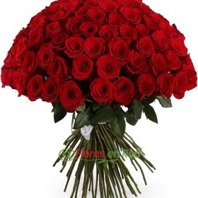 101 Rosas
