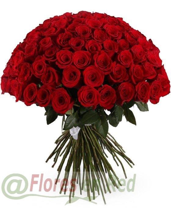 101 Rosas Rojas