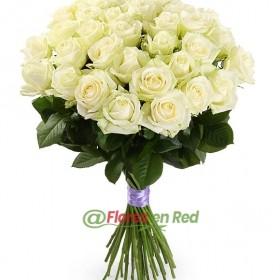 35 Rosas