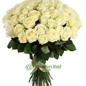 51 Rosas