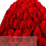Detalle 101 Rosas Rojas