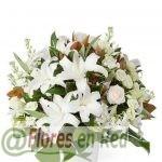 Centro Flores Armonía
