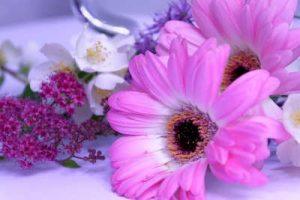 flores, flores para cumpleaños, ramos de flores para cumpleaños, flores de cumpleaños, ramos de flores de cumpleaños, ramos de flores para felicitar
