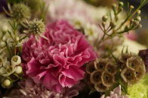 Flores, Rosas, Claveles, flores para cumpleaños, ramos de flores para cumpleaños, flores de cumpleaños, ramos de flores de cumpleaños