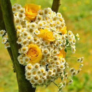 flores para cumpleaños, flores para graduación, flores para universitarias, ramos de flores para cumpleaños, flores de cumpleaños, rosas amarillas para cumpleaños