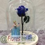 Rosa Eterna Frozen
