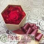 Rosa Roja Preservada Caja Hexágono