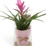 Bromelia Rosa en Cristal