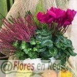 Centro tonos rosas y calabazas-FR451