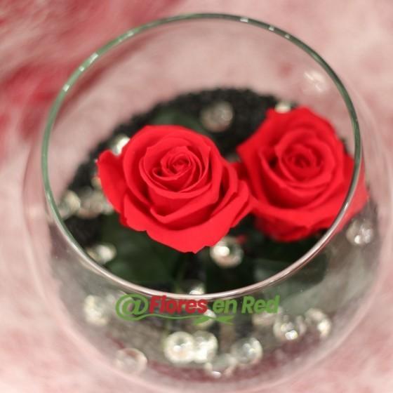 Pecera dos rosas rojas